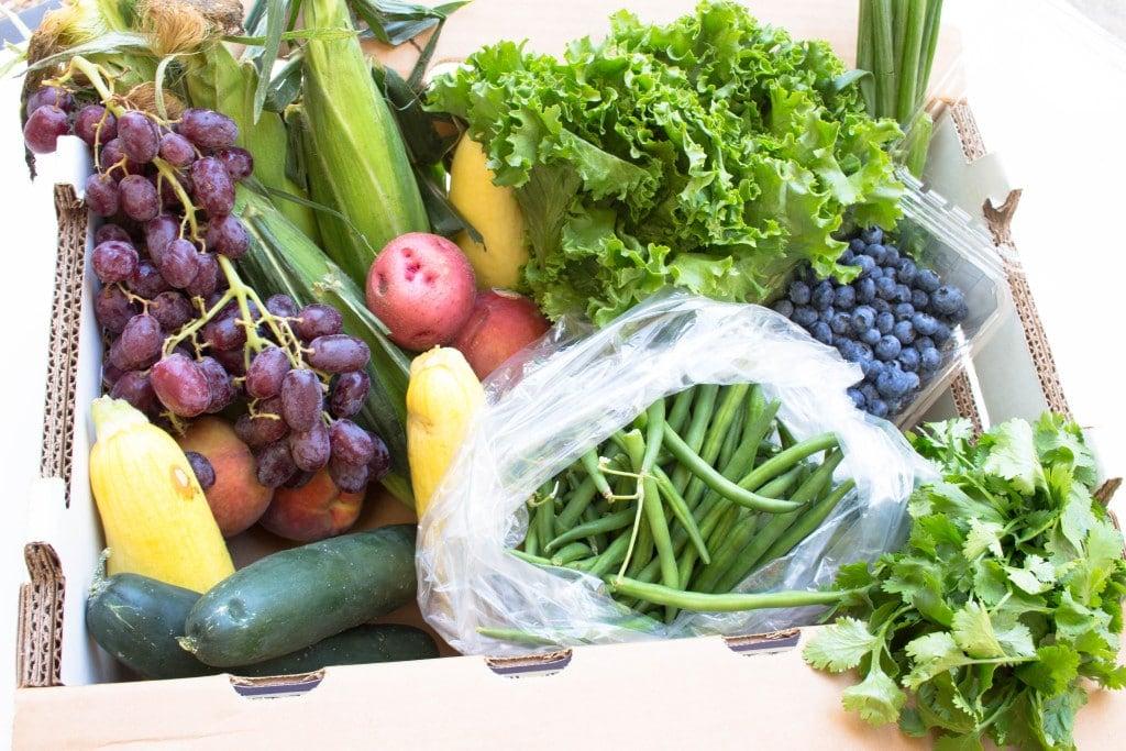 Farm to Families 1st quality produce box