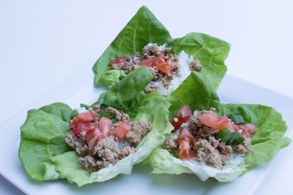 Asian Style Butter Lettuce Wraps - yummy as an appetizer or good for a whole meal!! Recipe found at Krollskorner.com