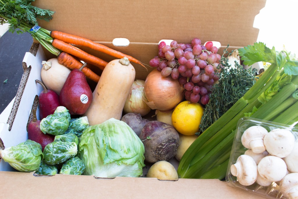 Farm to Families Produce Box from 1st Quality Produce!