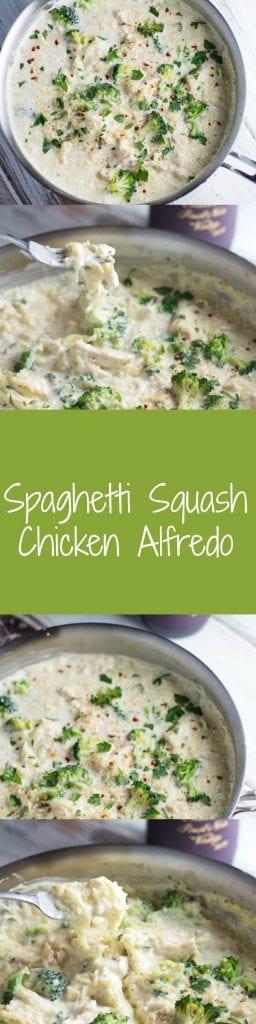 Spaghetti Squash Chicken Alfredo - OH MY GOODNESS!!! | Krollskorner.com