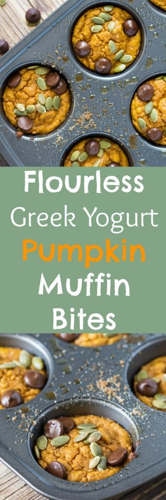 Flourless Greek Yogurt Pumpkin Muffin Bites! #fall #KrollsKorner |Krollskorner.com