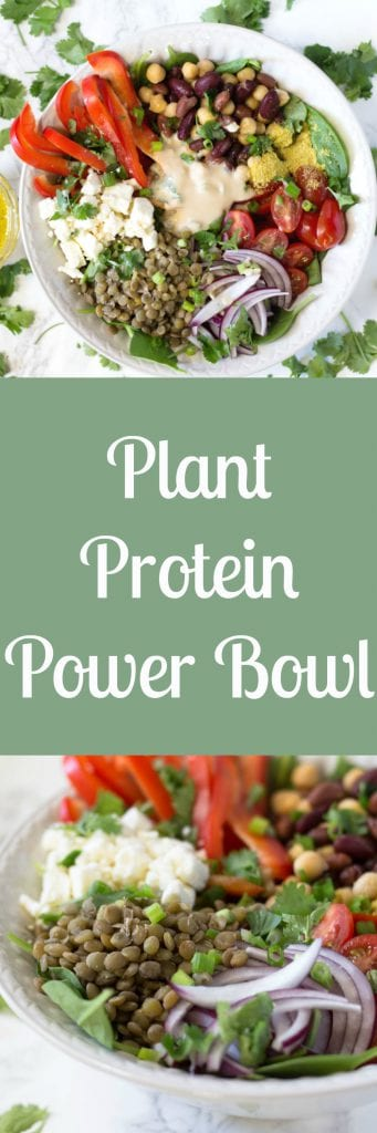 This plant protein bowl is loaded with protein, antioxidants and nutrients to fuel you up all day! |krollskorner.com