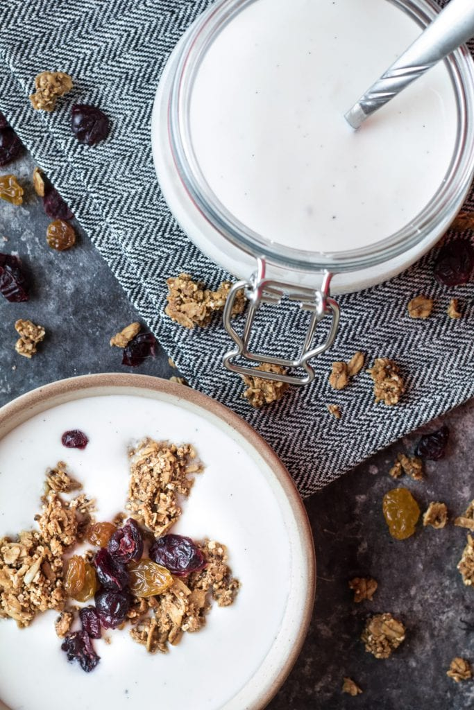 instant pot yogurt in bowl topped with granola and raisins