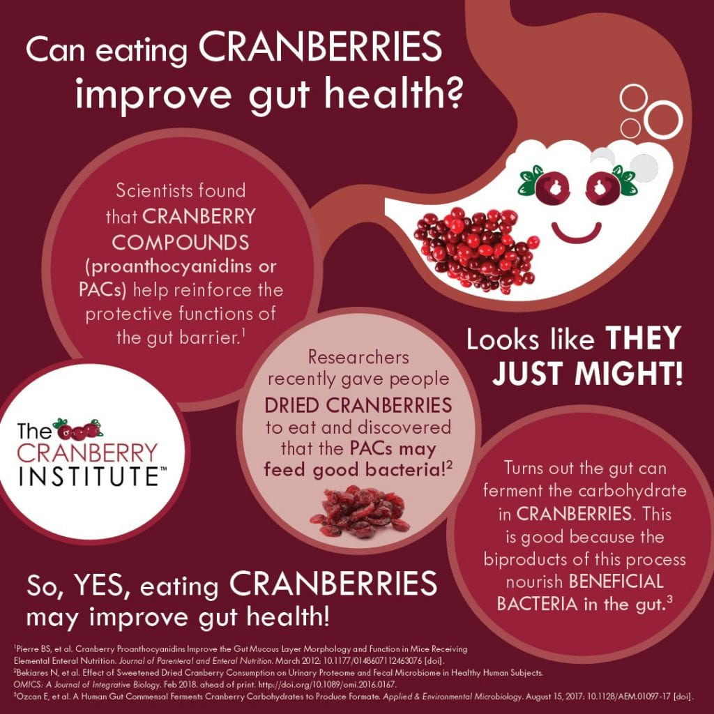 A graphic on cranberries and gut health