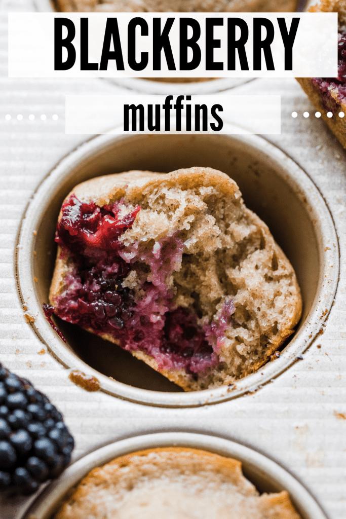 blackberry muffin in a muffin tin