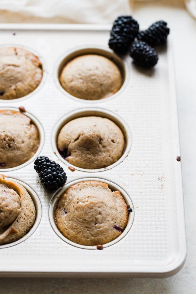 blackberry muffins in a muffin tin