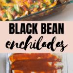 ground turkey enchiladas in a casserole dish