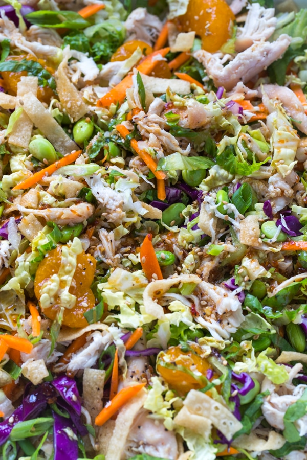 Oriental chicken salad with mandarin oranges and asian dressing