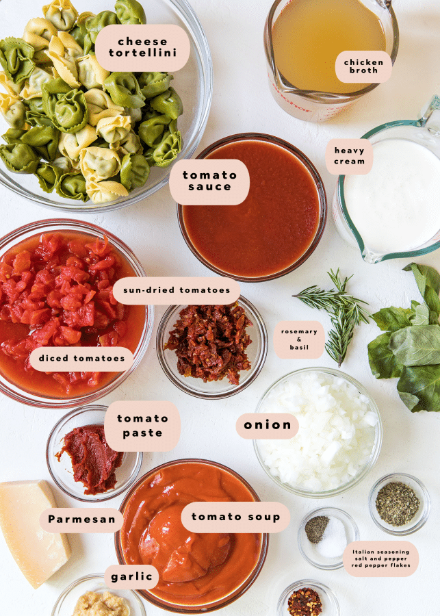 ingredients needed to make 30 minute tomato soup